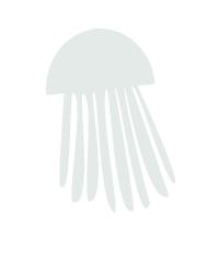 medusa_az-01