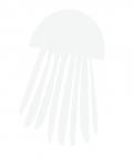illustration_medusa_1-01